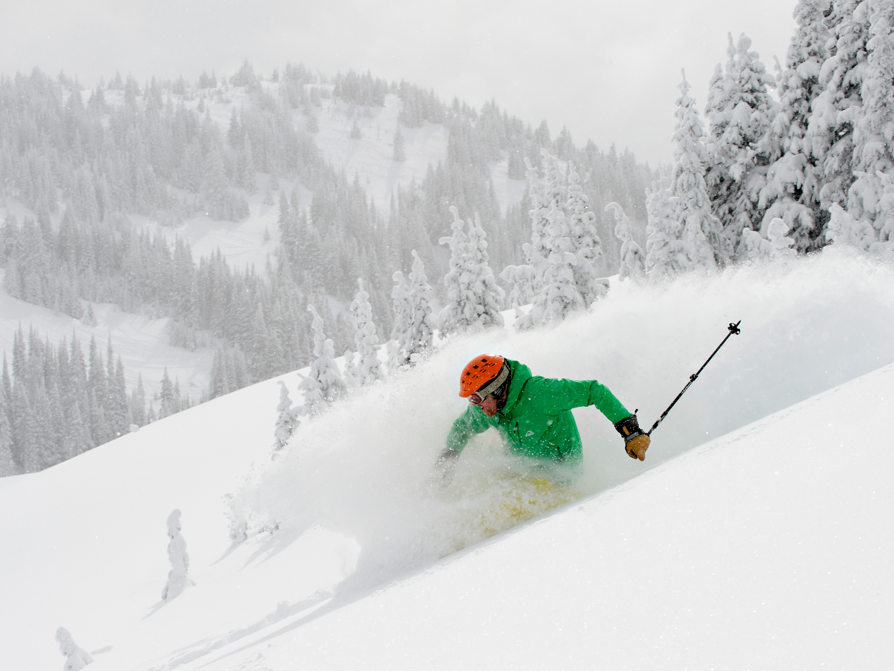 Skier in deep powder
