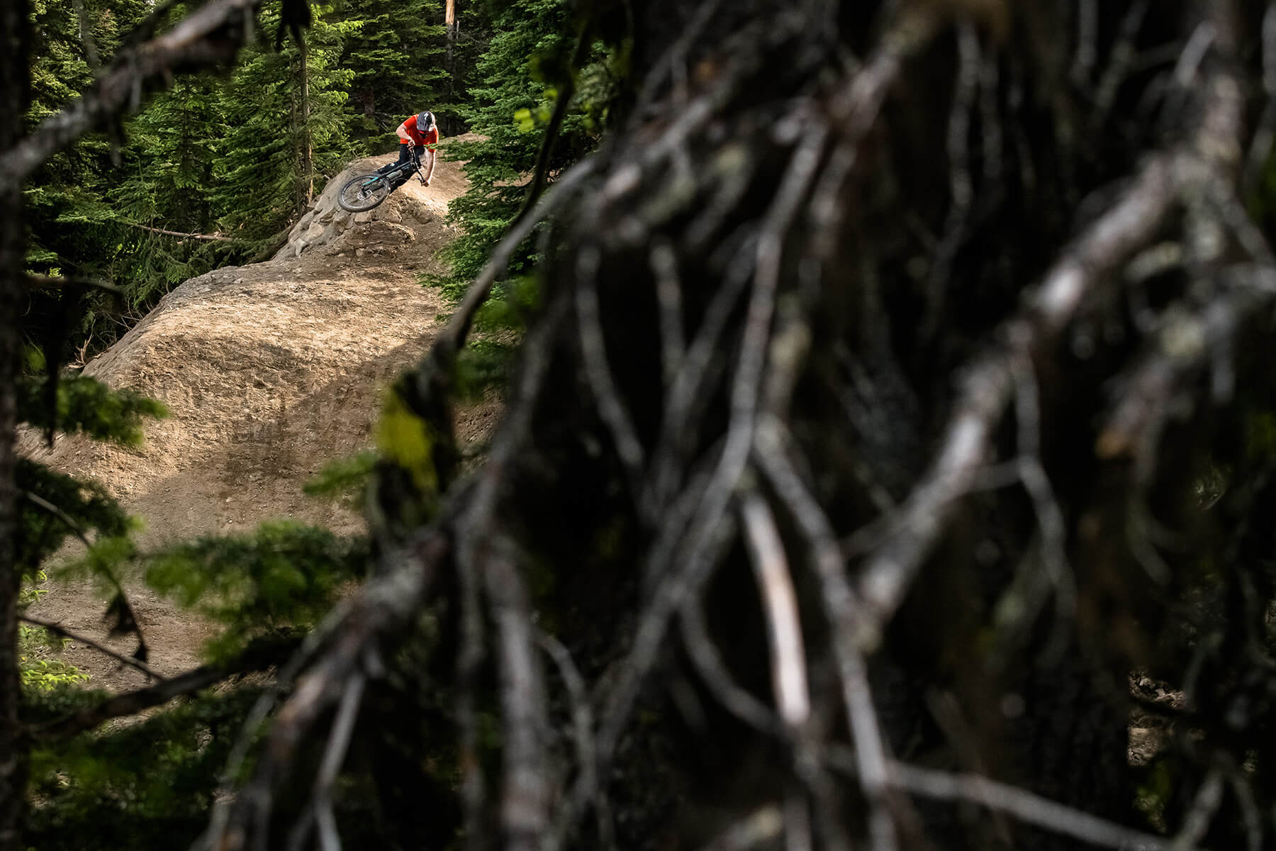 Steam Shovel Mountain Bike Trail at Sun Peaks Resort