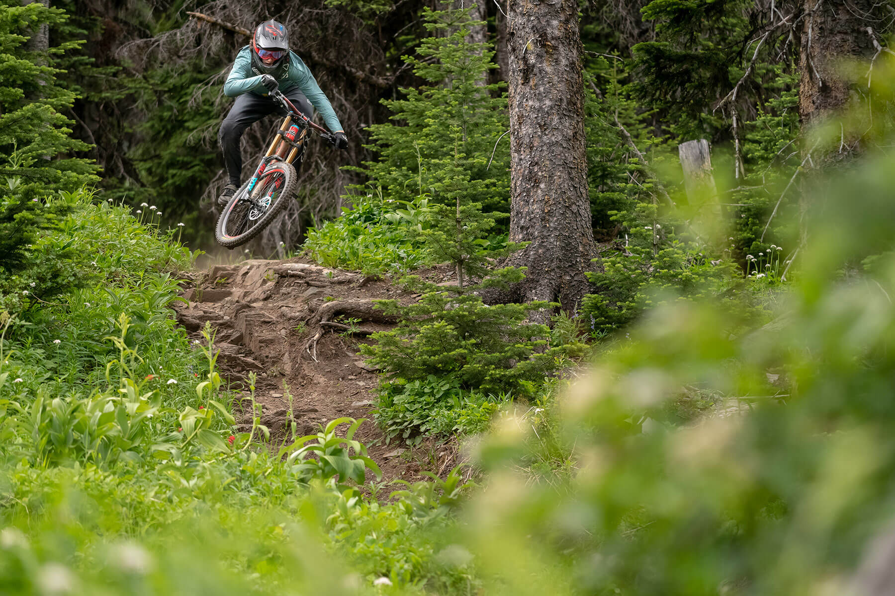 Downhill Mountain Biking at Sun Peaks Resort