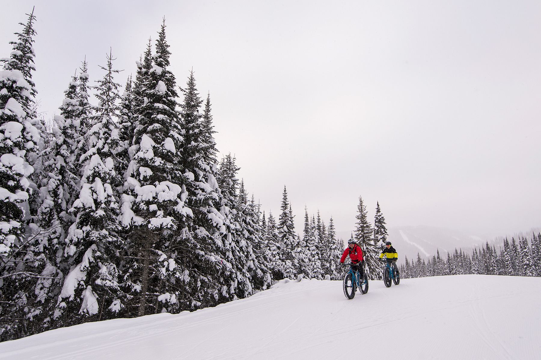 Exploring the snowy forests surrounding Sun Peaks is easy on a fat bike.