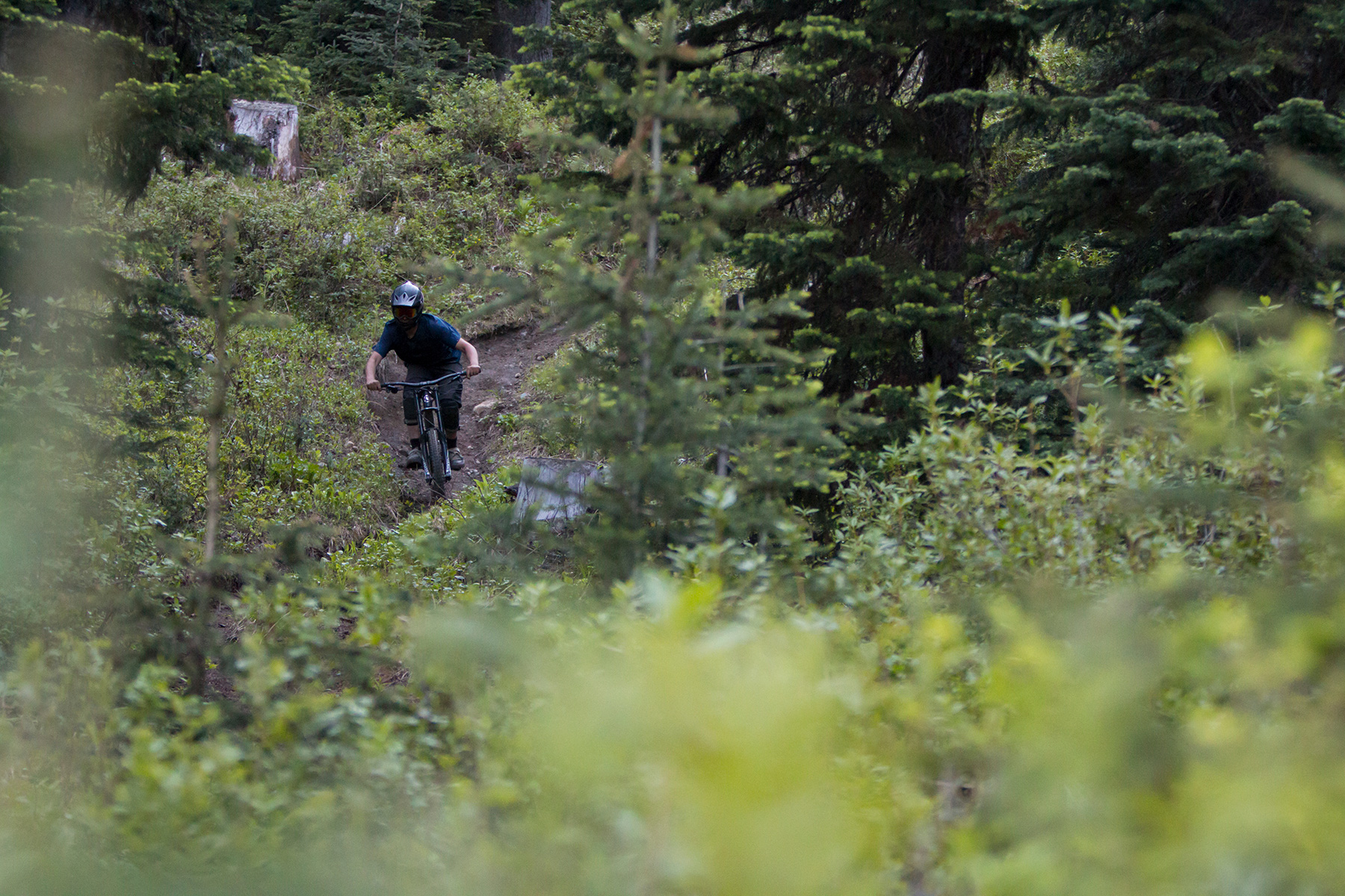 Rider on Smitty's Steeps in the Sun Peaks Bike Park