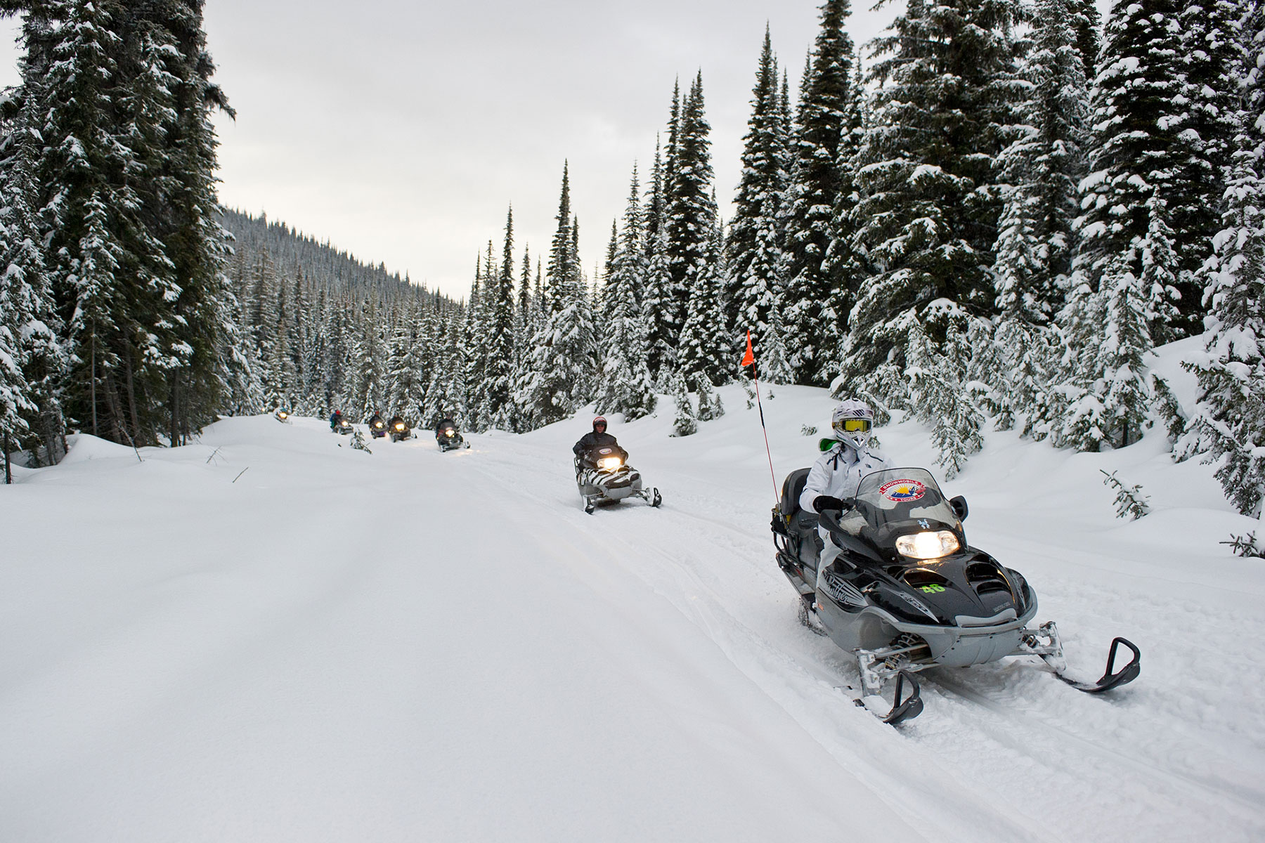 Snowmobiling Tour