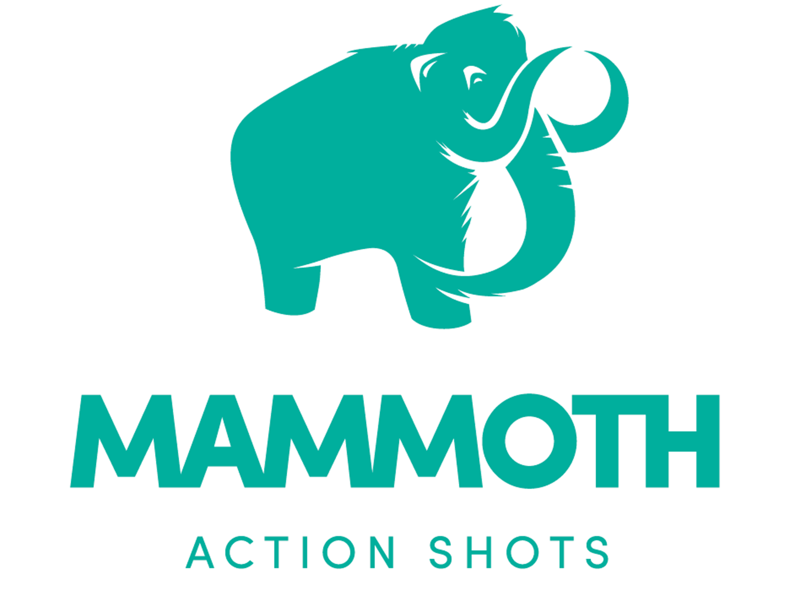 Mammoth Action Shots