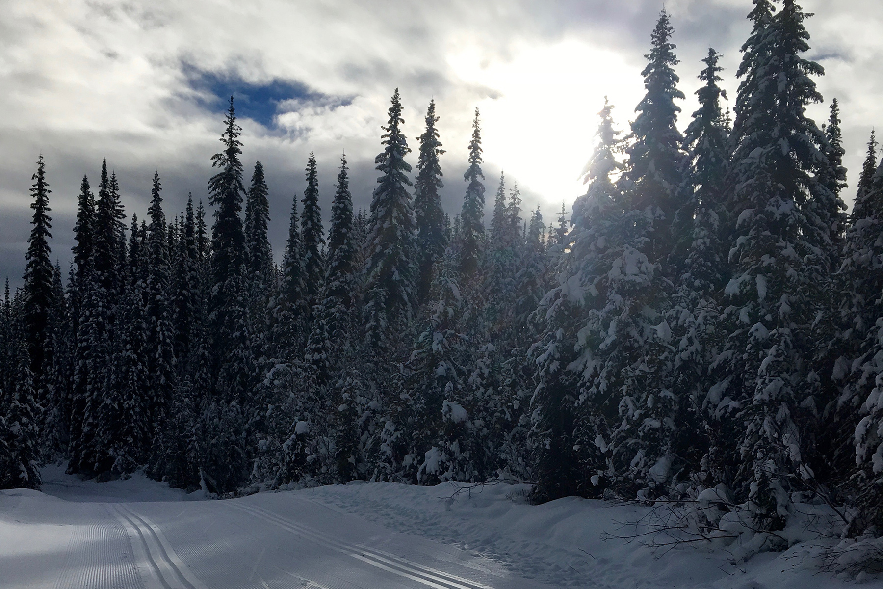 Nordic Trails on Opening Day