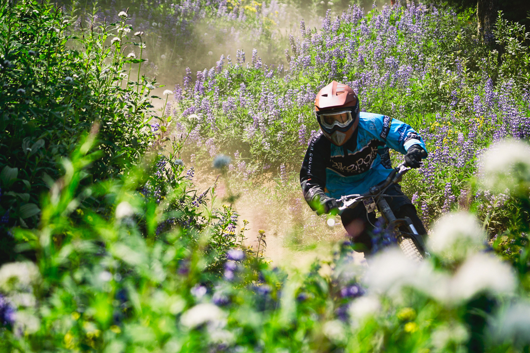 Peak of the Season - Riding through wildflowers in the Bike Park