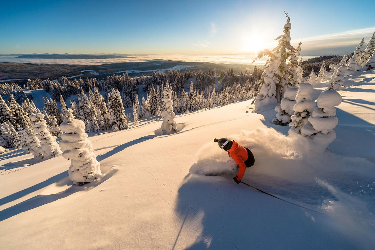 Top gift cards for christmas 2019 snow