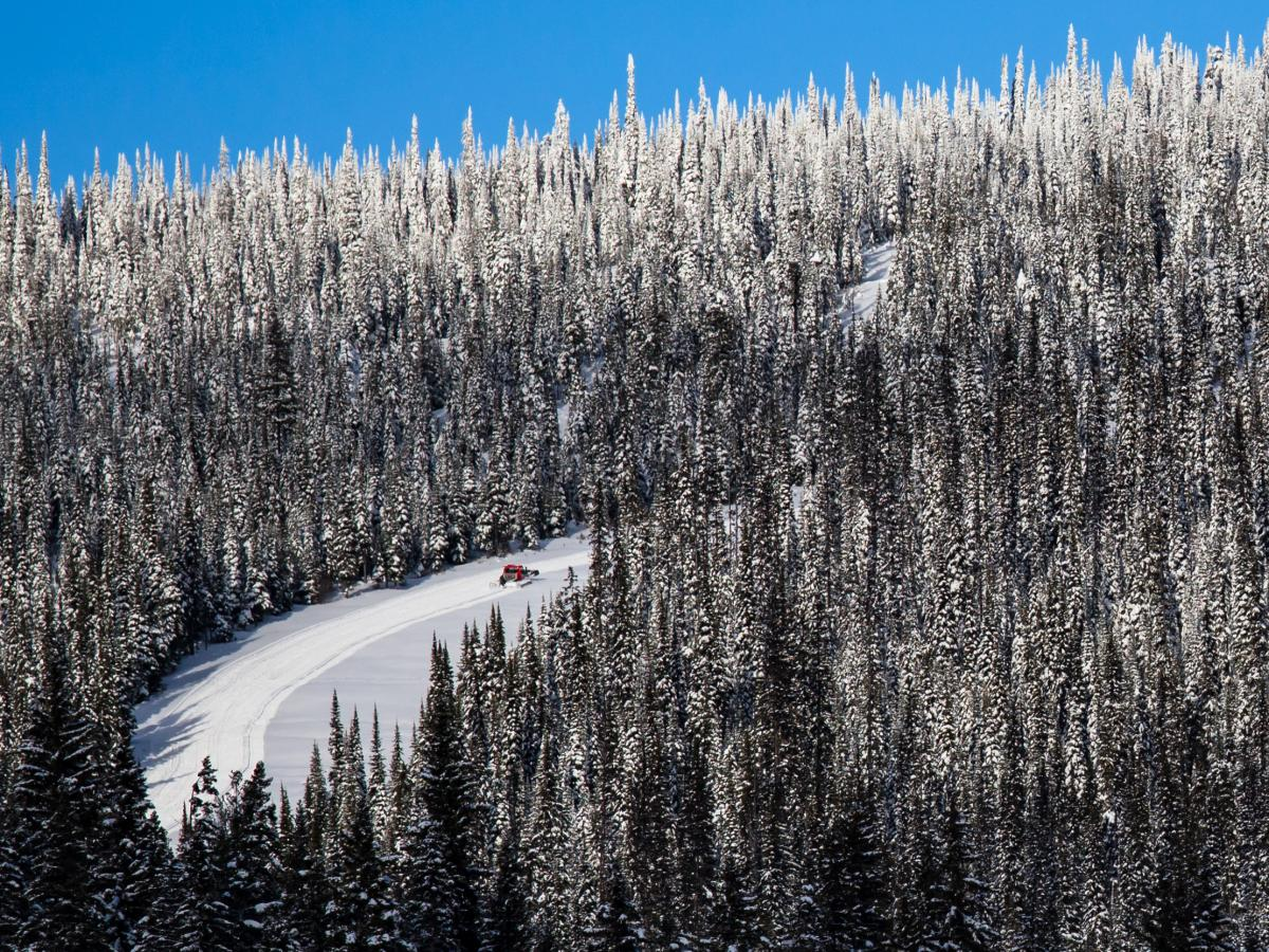 Snowcat on opening weekend. Photo by Cedar Line Creative
