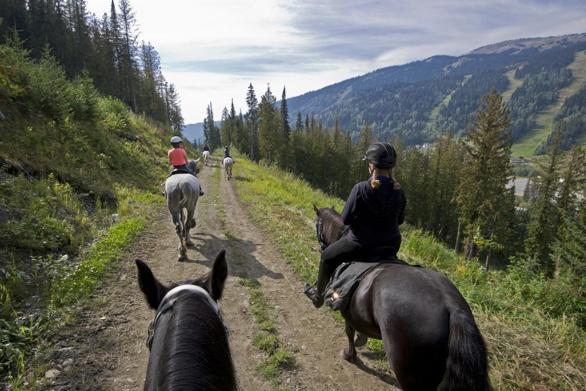 Explore the resort by horseback with Sun Peaks stables