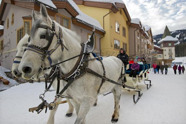 Horse Sleigh Ride through the village