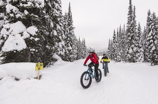 Fat Biking in Sun Peaks