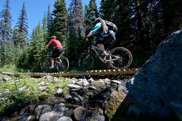 Introduction to Cross Country Mountain Biking
